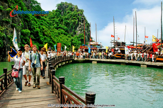 Be careful when choosing Ha Long Travel Company is essential for tourists