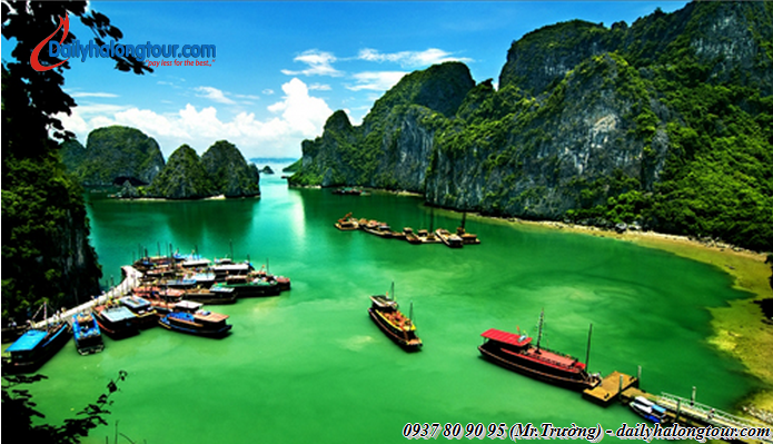 Ha Noi Ha Long tours with a fanciful picture of nature