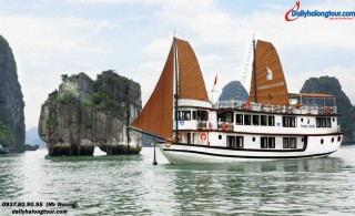 Ha Long Phoenix Luxury (2days/1night)